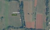 Istra, Bale okolica poljoprivredno zemljište 2427m2
