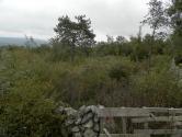 Krk,gr.zemljište površine 1200m2,struja i voda do terena