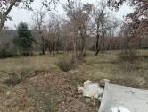 Istra, okolica Vrsara, poljoprivredno zemljište sa priključkom struje, 15050 m2